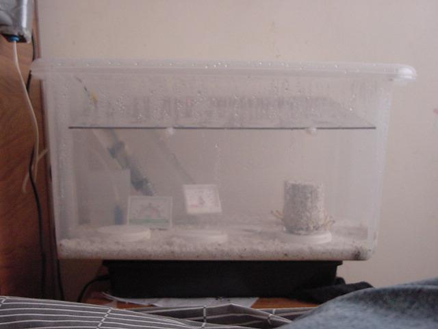 PF Style Birthing Chamber